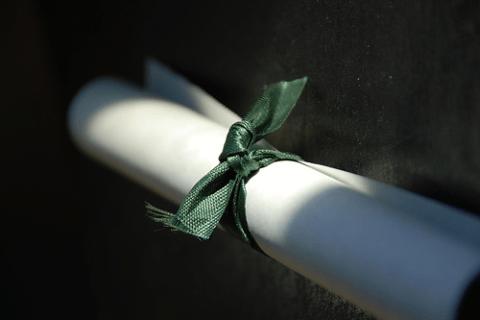 fake diploma - online schools