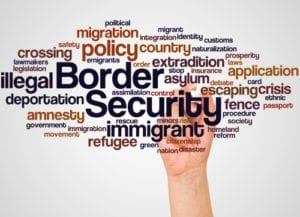 homeland security degree