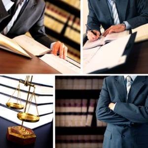 bachelor legal studies