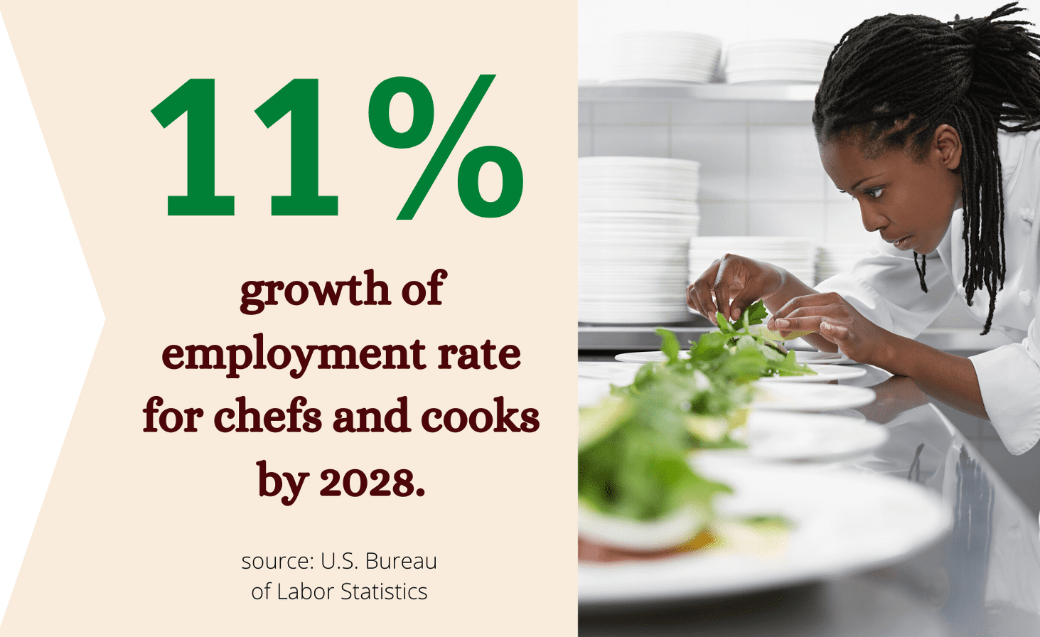 chef employment rate